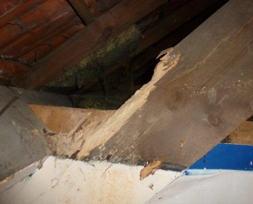 Aanpassen dakstructuur